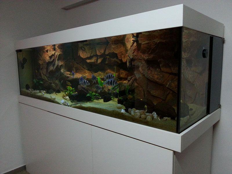 Zaljubljenost u akvarij